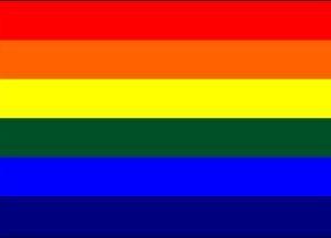 """16""""x24"""" Inch Rainbow Gay Pride Flag Sewn Stripes Highest Quality Boat Flag"""